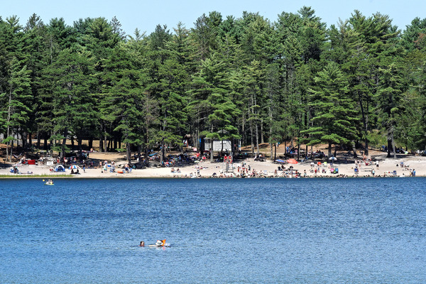 College Pond swimming beach