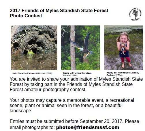 Myles Standish SF photo contest