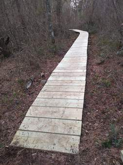 picture of East Head boardwalk after re-decking